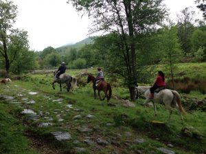 Foto-equitacion-Casa-Rural-El-Vergel-de-Chilla