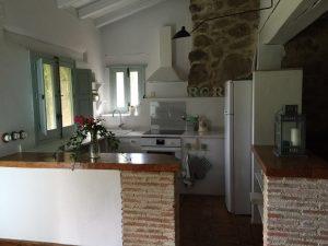 Foto-abejas2-Casa-Rural-El-Vergel-de-Chilla