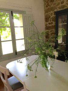 Foto-abejas18-Casa-Rural-El-Vergel-de-Chilla