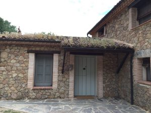 Foto-abejas19-Casa-Rural-El-Vergel-de-Chilla