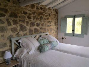 Foto-abejas25-Casa-Rural-El-Vergel-de-Chilla