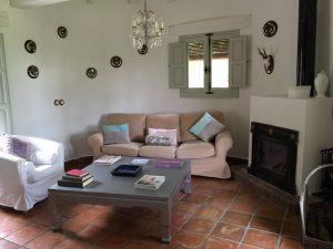 Foto-abejas31-Casa-Rural-El-Vergel-de-Chilla