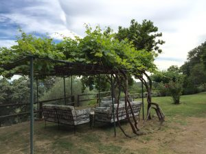 Foto-abejas42-Casa-Rural-El-Vergel-de-Chilla