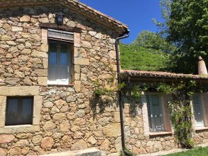 Foto-abejas47-Casa-Rural-El-Vergel-de-Chilla
