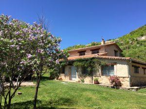 Foto-abejas49-Casa-Rural-El-Vergel-de-Chilla