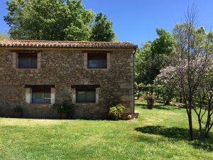 Foto-abejas50-Casa-Rural-El-Vergel-de-Chilla