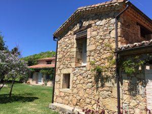Foto-abejas51-Casa-Rural-El-Vergel-de-Chilla