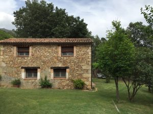 Foto-abejas54-Casa-Rural-El-Vergel-de-Chilla