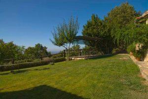 Foto-abejas55-Casa-Rural-El-Vergel-de-Chilla