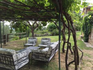 Foto-abejas56-Casa-Rural-El-Vergel-de-Chilla