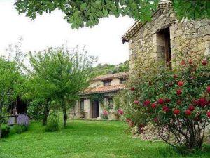 Foto-abejas59-Casa-Rural-El-Vergel-de-Chilla