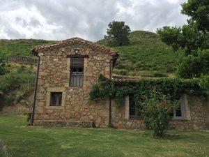 Foto-abejas60-Casa-Rural-El-Vergel-de-Chilla