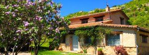Foto-abejas-exterior1-Casa-Rural-El-Vergel-de-Chilla