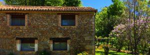 Foto-abejas-exterior2-Casa-Rural-El-Vergel-de-Chilla