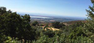 Foto-vistas-casas3-Casa-Rural-El-Vergel-de-Chilla